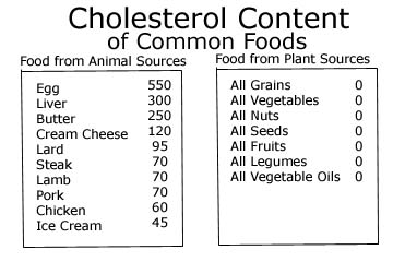 cholesterol food chart: Pain on your plate part ii vegetarian vegan diet meat animal